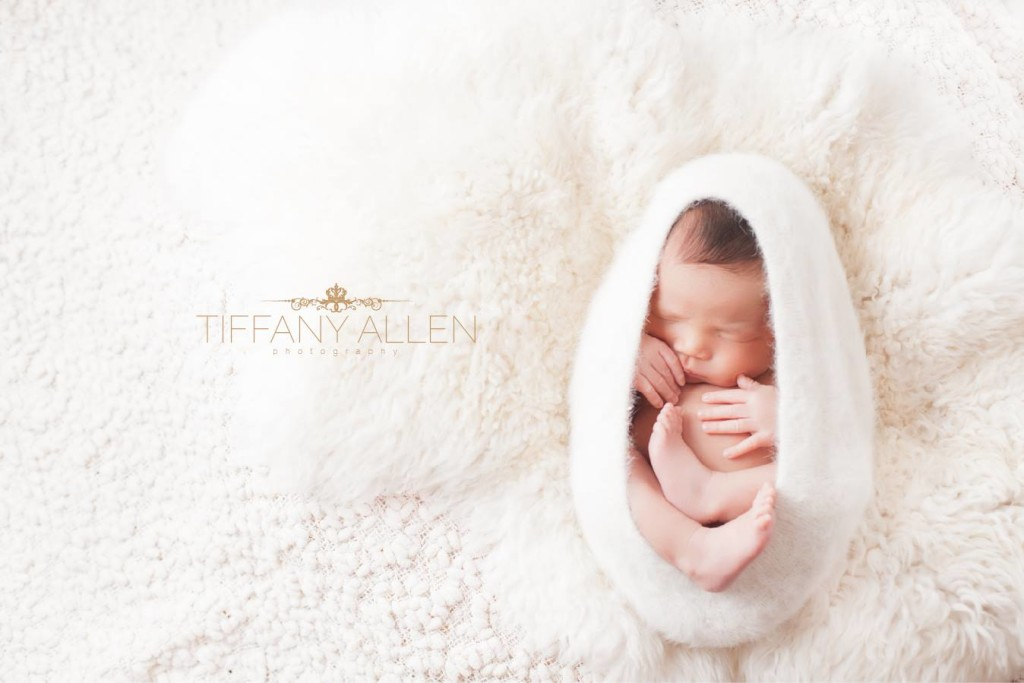 Tiffany Allen Photography1